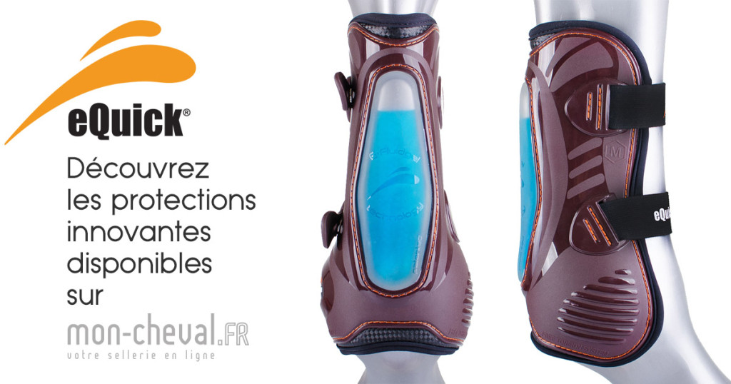 Protections cheval eQuick